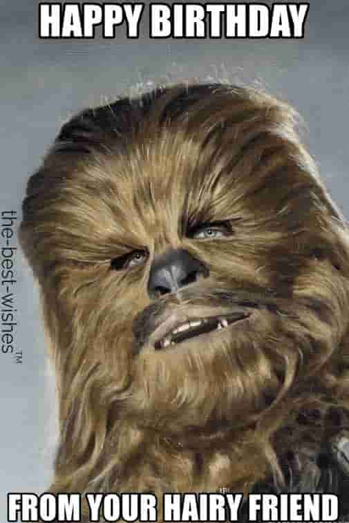 chewbacca funny birthday memes from your hairy friend