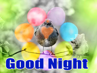 good night  photographs