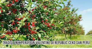 Tradisi Unik Perayaan Valentine Di Republic Ceko dan Peru