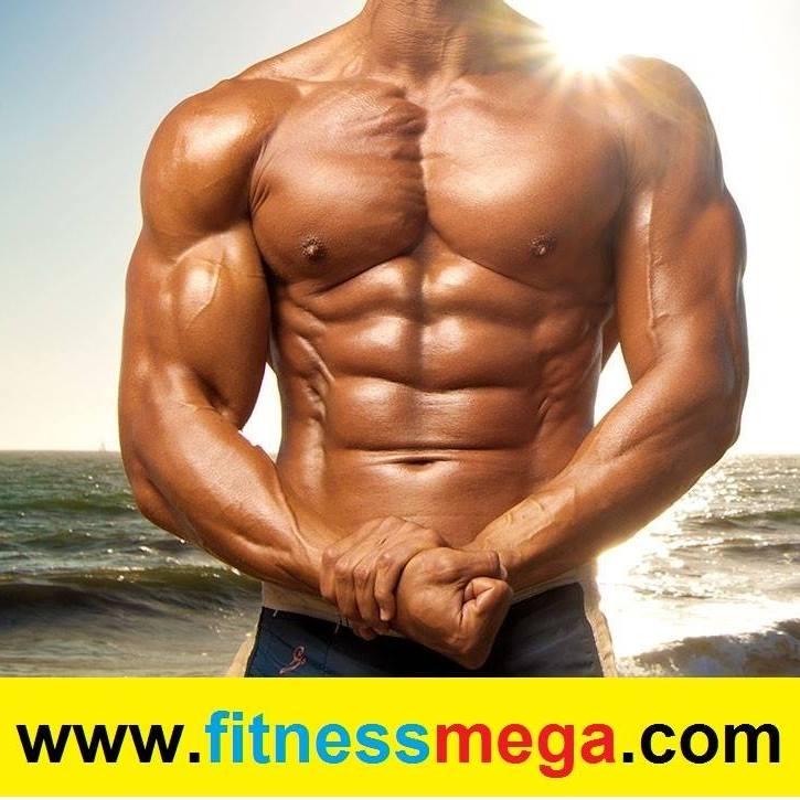 fitness mega