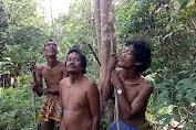 Ratusan Hewan Liar Ditemukan Mati Serempak, Diduga Karena Keracunan
