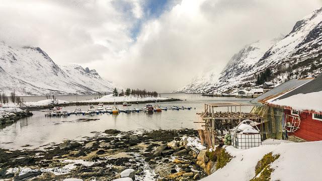 Secadero de pescado en Ersfjordbotn, Kvaløya - Tromso por El Guisante Verde Project