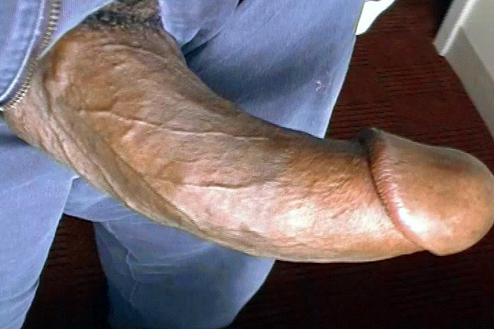 penis pornos