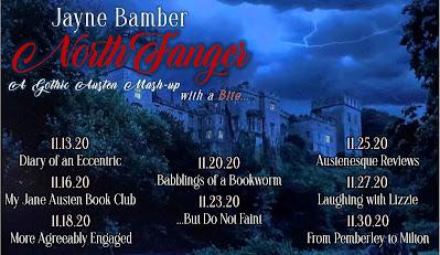 Blog Tour: Northfanger by Jayne Bamber