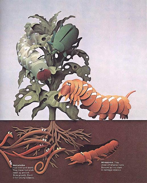 a Raymond Ameijide papercut children's illustration of garden pests