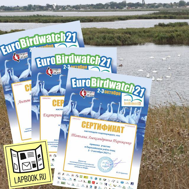 Сертификаты учета птиц  Eurobirdwach 2021