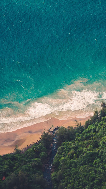 HD Wallpaper, Forest, Beach Waves, Sea, Aerial View