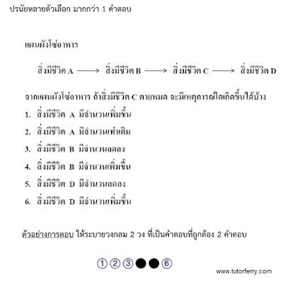 ข้อสอบ Onet