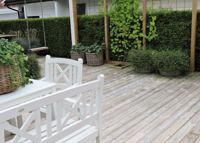 Jeanette klarer seg utmerket med å ha terrasse som hage - uterommet går for det meste i grønne vekster IMG_3439 (2)