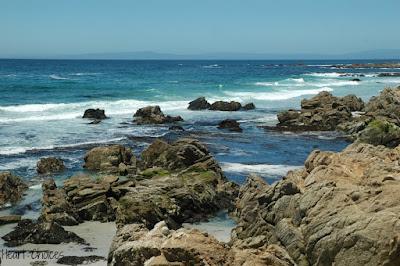 Five Minute Friday: Ocean