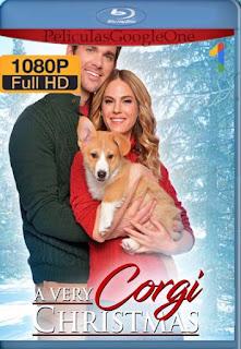Una Navidad con Corgi (2019)[1080p Web-DL] [Latino-Inglés][Google Drive] chapelHD