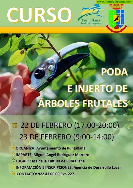 Curso de poda e injerto de árboles frutales