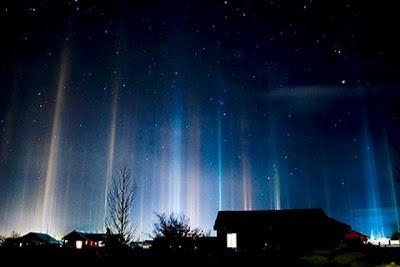 As Forças da Luz e as Forças das Trevas artigo cobra