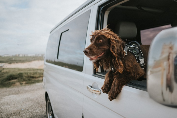 Cornwall in a Camper with goboony