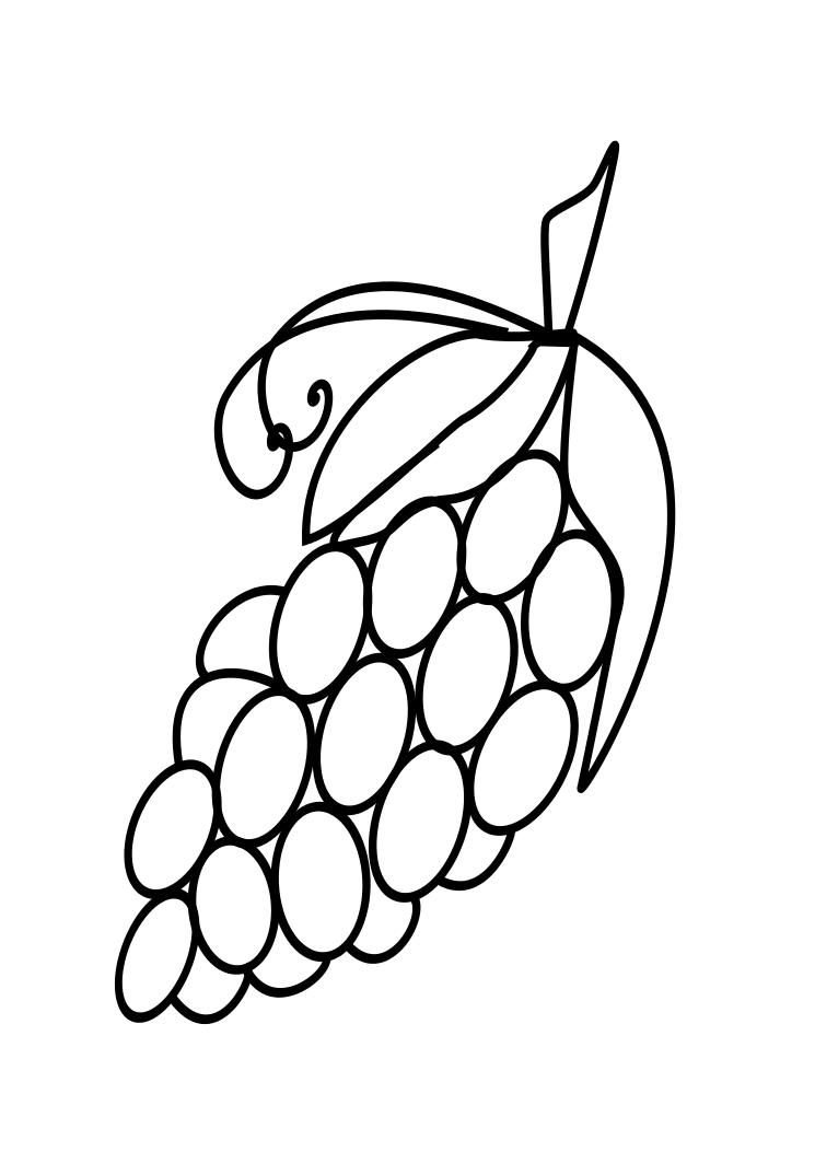Fruits Drawings: Grapes Coloring Page