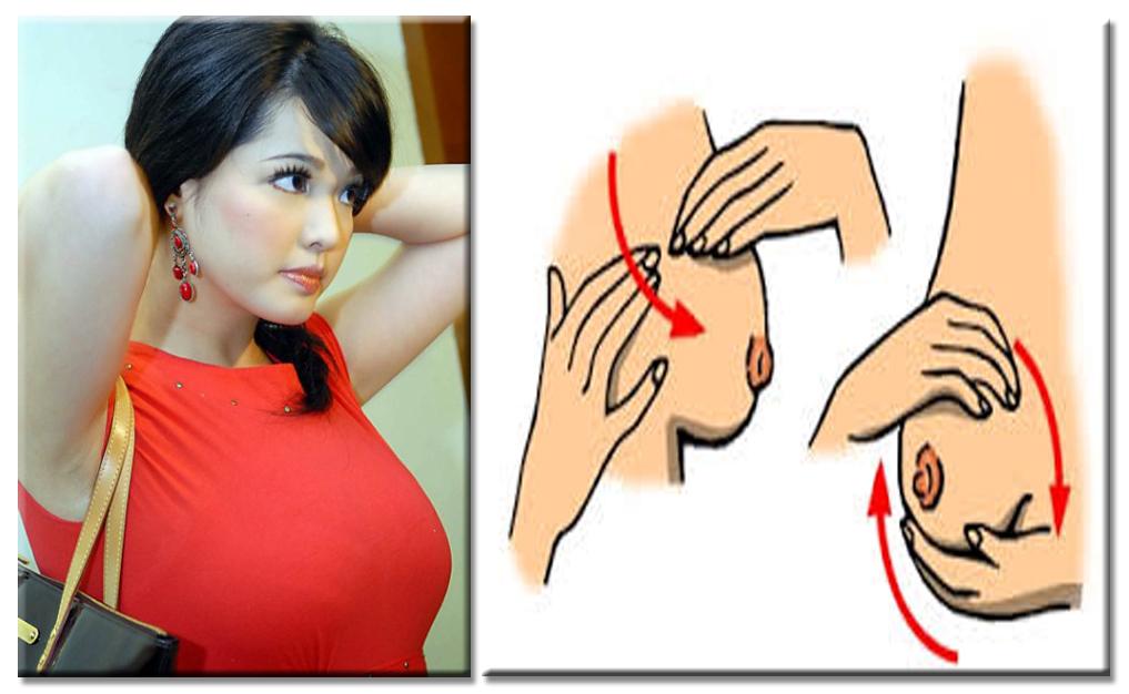 Berbagi tips: Cara Merawat Payudara Agar Tetap Sehat dan ...
