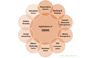 Applications of DBMS