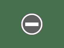 東京至名古屋+北海道紫藤景點情報