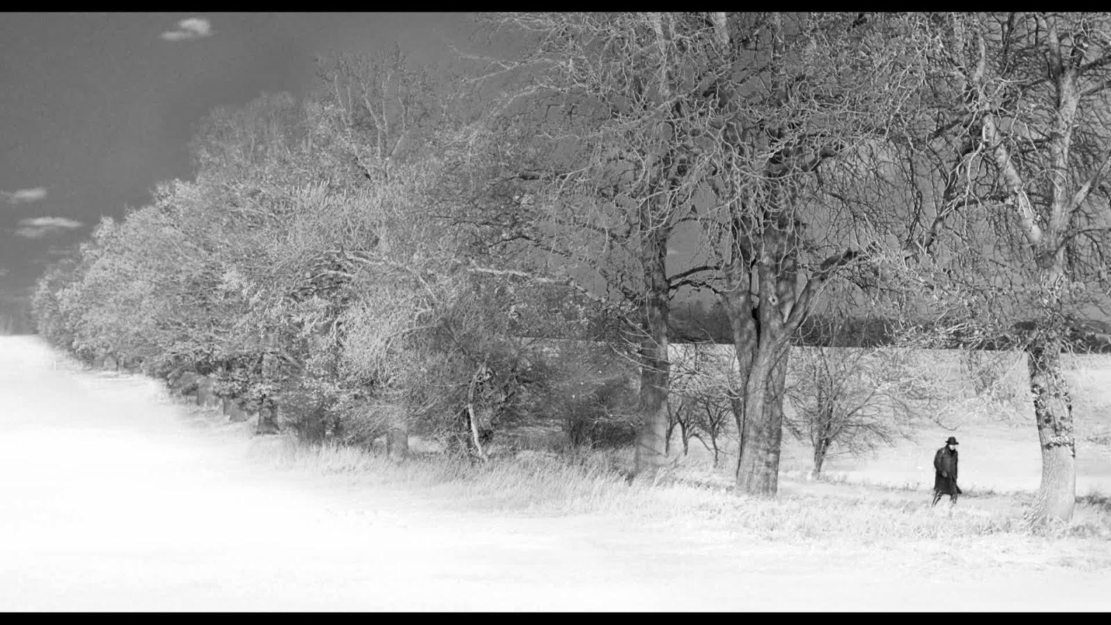 beauty and the beast 1983 arlien soborg film # 80