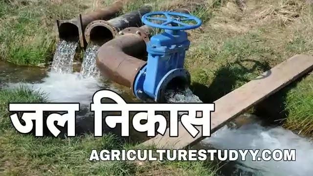 जल निकास क्या है इसकी परिभाषा, jal nikas, drainage in hindi, जल निकास के उद्देश्य एवं आवश्यकता, जल निकास के लाभ एवं हानियां, जल निकास की प्रणालियां