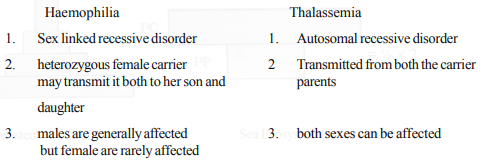 Differentiate between the pattern of inheritance in humans of the blood diseases, haemophilia and thalassemia.