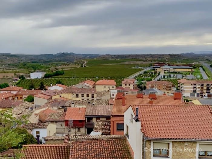 リオハのワイン村ブリオネスのぶどう畑と家々
