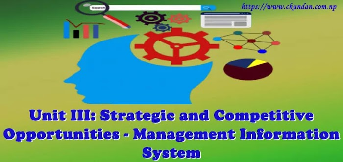 Unit III: Strategic and Competitive Opportunities - Management Information System