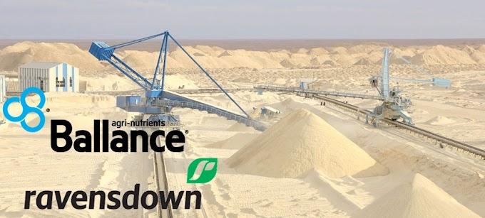Denuncian a las empresas neozelandesas Ravensdown y Ballance Agri Nutrients por el saqueo ilegal del fosfato saharaui junto a Marruecos.