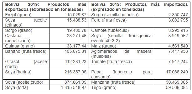 Bolivia importó semilla transgénica y exportó procesados de soya en millones de toneladas