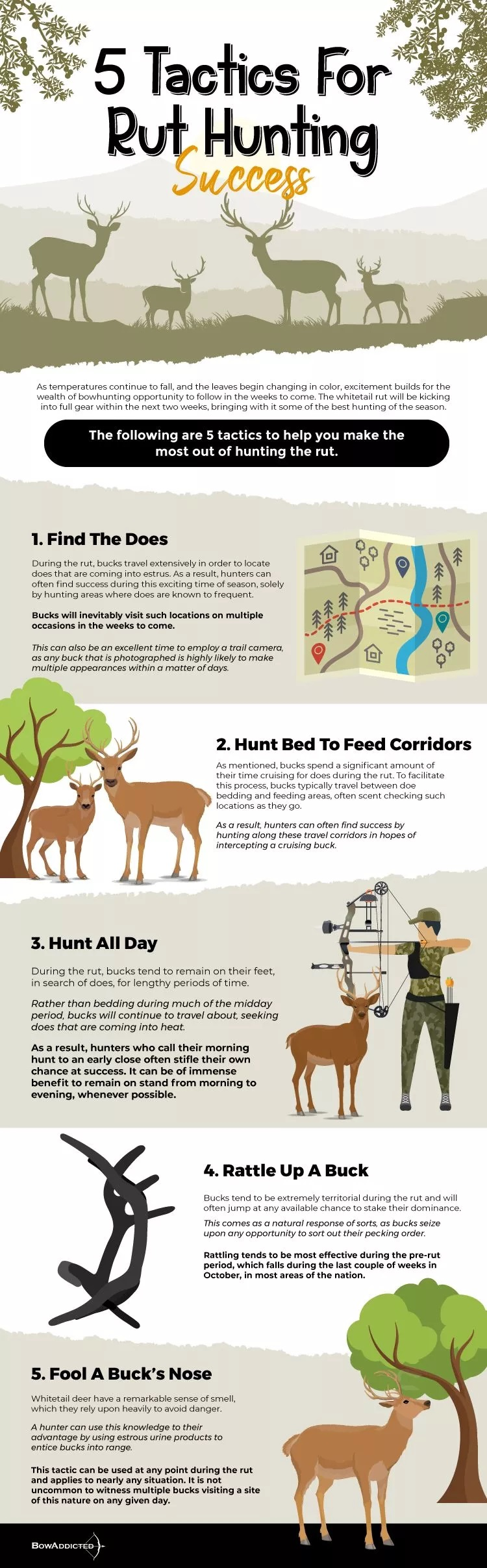 5 Tactics For Rut Hunting Success #infographic #Sports and Athletic #Hunting
