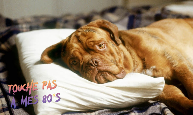 https://fuckingcinephiles.blogspot.com/2019/10/touche-pas-mes-80s-69-turner-hooch.html