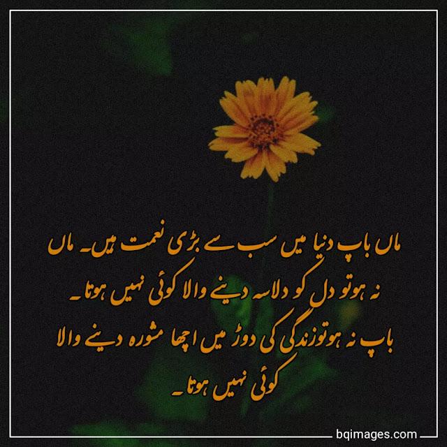 Parents Quotes in Urdu