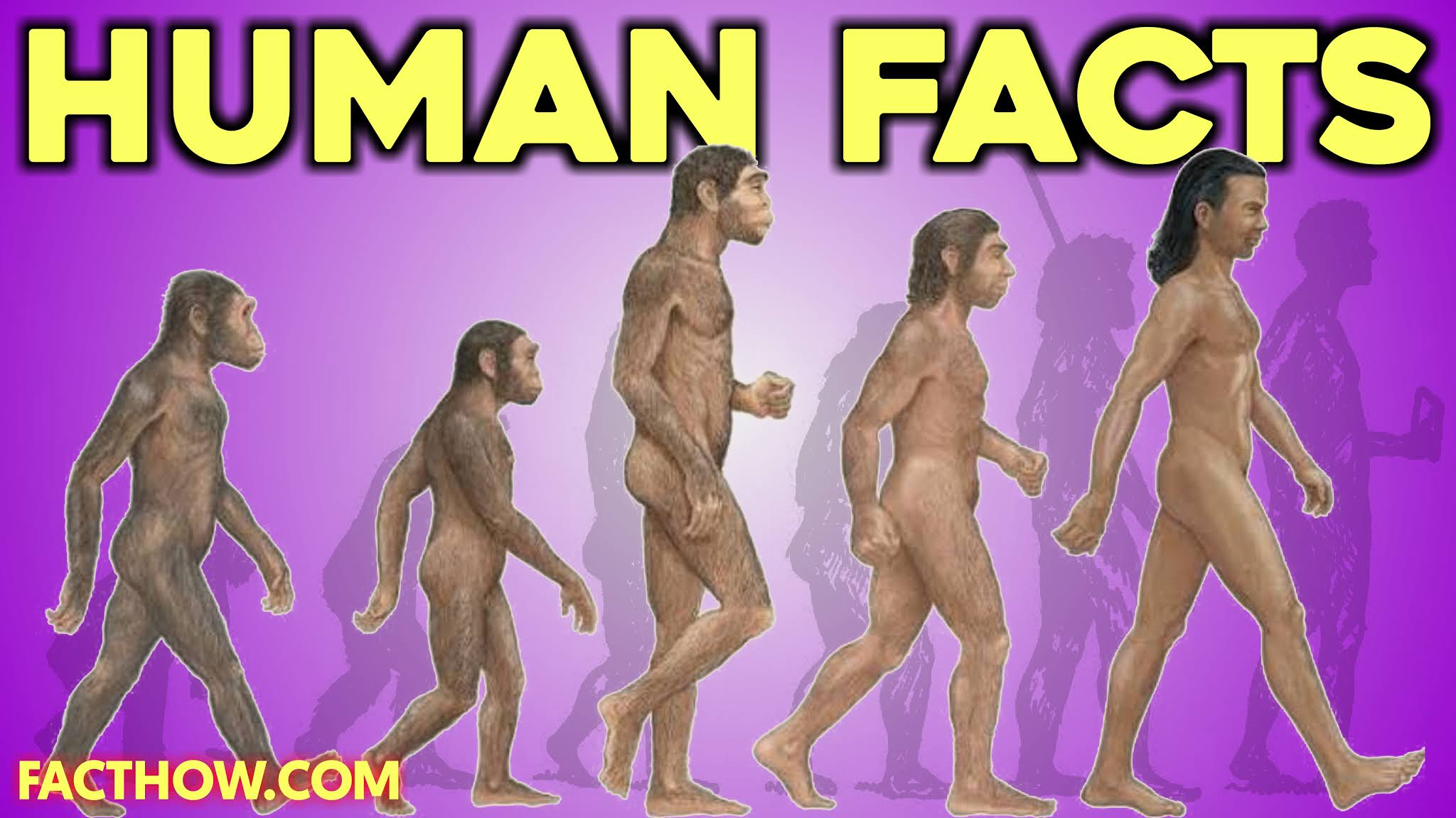 Human body power in Hindi Psychological Facts About Body Language in Hindi How human body works in Hindi Amazing facts about human body parts Human Psychology facts in Hindi Biology Human body in Hindi Body ki jankari Human Science in Hindi