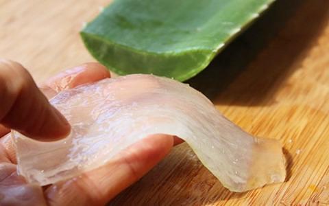 Tanaman dengan daun berduri ini banyak dimanfaatkan dalam produk kecantikan wanita misalny Cara Memutihkan Kulit Wajah Dengan Masker Lidah Buaya