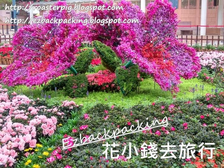 香港花展2021杜鵑花花圃