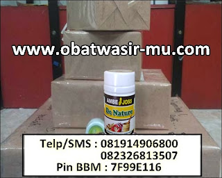 Jual Obat Benjolan Wasir Di Kabupaten Konawe Utara (082326813507)