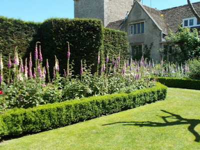 Foxglove heaven A Garden Design Masterclass at Abbey House Gardens
