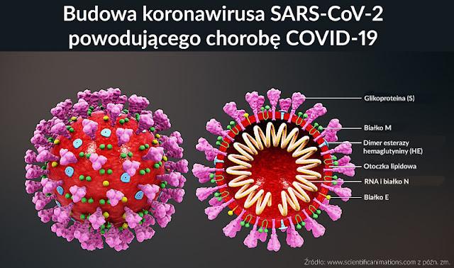 koronawirus COVID19