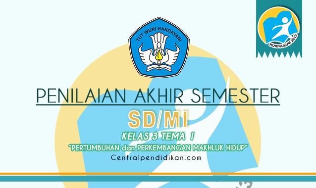 Contoh Soal PAS Kelas 3 SD/MI Tema 1