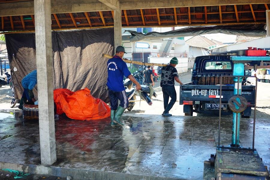 Jimbaran fish market in Bali, Indonesia