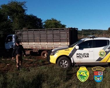 Polícia Militar recupera gado furtado em Campo Mourão - PR