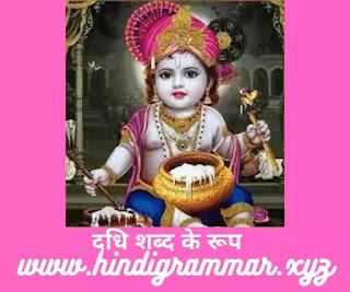 Dadhi Shabd Roop In Sanskrit