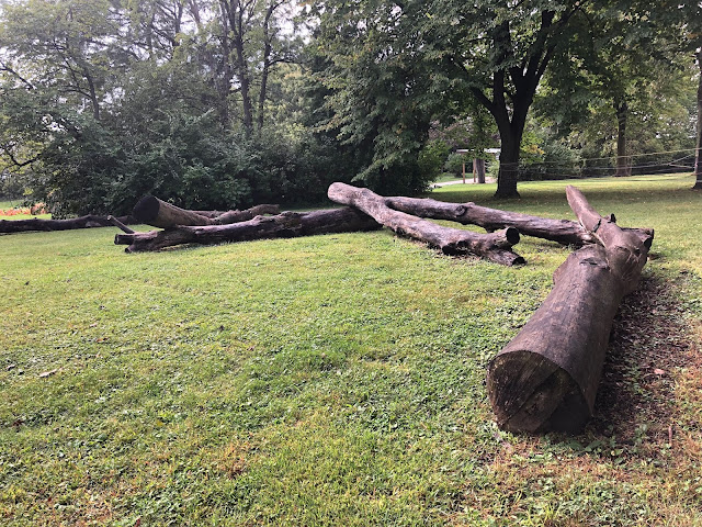 Log balance beam course at Pumpkin Daze at Abbey Farms in Aurora, Illinois