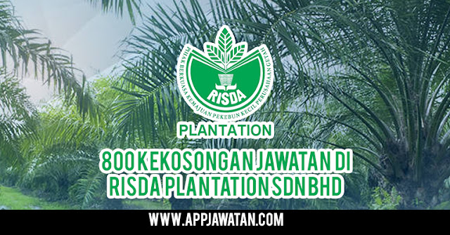 800 Kekosongan Jawatan di Risda Plantation Sdn Bhd