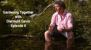 Gardening Together with Diarmuid Gavin episode 4