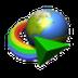 Internet Download Manager 6.31 build 9
