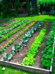 bahçe tarımı bölümü ne iş yapar