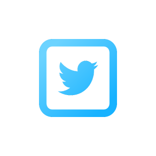 bird, blue, network, share, twitter icon