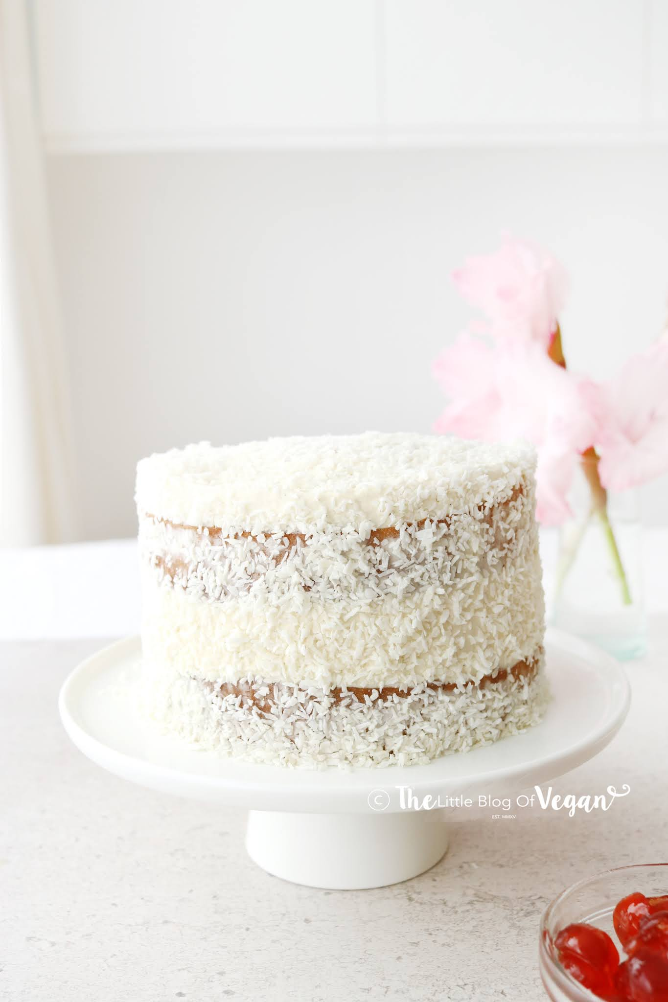 Cake coveted in coconut