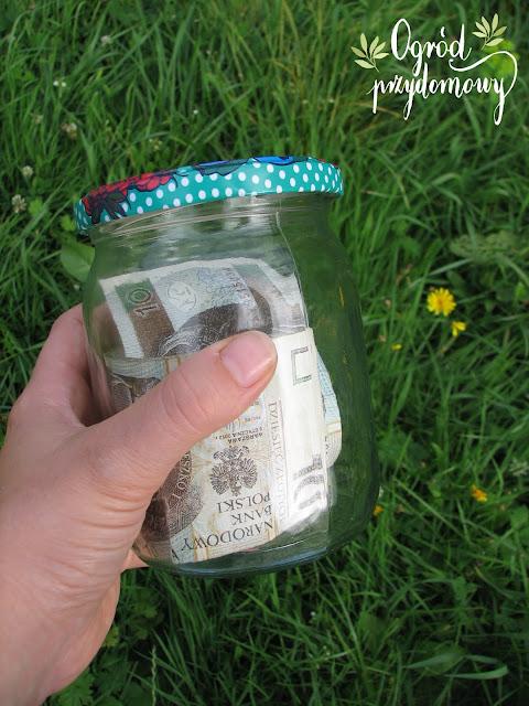 jak zdobyć pieniądze, ogród przydomowy, ogród za grosze